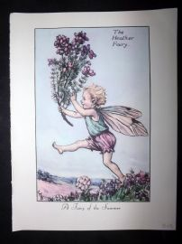 Cicely Mary Barker 1955 Vintage Flower Fairies Print. Heather & Red Clover Fairy